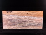 """Wooden painting """"Diving on the Reef"""", pyrography art"""